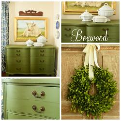 Miss Mustard Seed Milk Paint Boxwood Sample