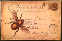 Aged Papers- Bee Carte Postal